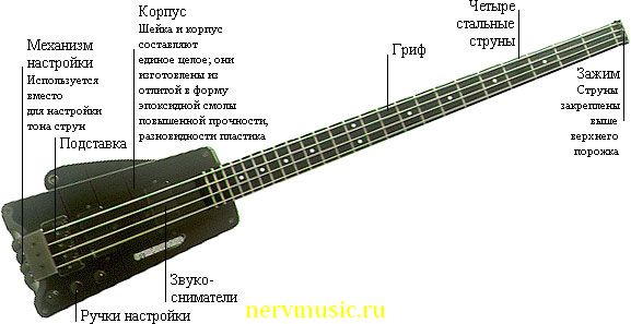 Бас-гитара Штайнбергера | Музыкальная энциклопедия от А до Я | Музыкальные инструменты