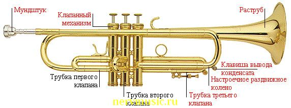 Труба | Музыкальная энциклопедия от А до Я | Музыкальные инструменты