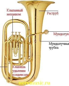 Туба | Музыкальная энциклопедия от А до Я | Музыкальные инструменты