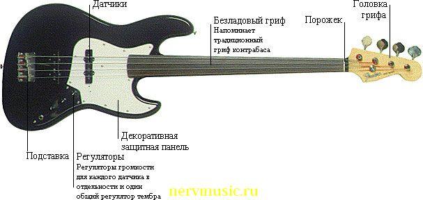 Безладовая бас-гитара | Музыкальная энциклопедия от А до Я | Музыкальные инструменты