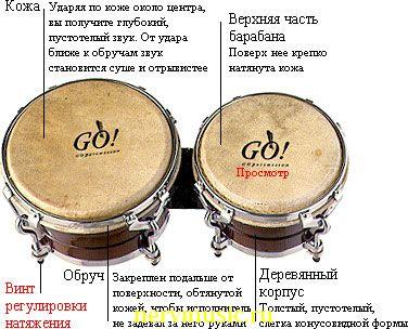 Бонги | Музыкальная энциклопедия от А до Я | Музыкальные инструменты