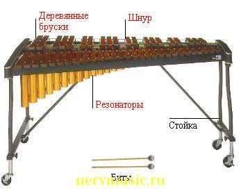 Ксилофон | Музыкальная энциклопедия от А до Я | Музыкальные инструменты