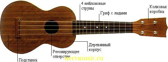 Укулеле | Музыкальная энциклопедия от А до Я | Музыкальные инструменты