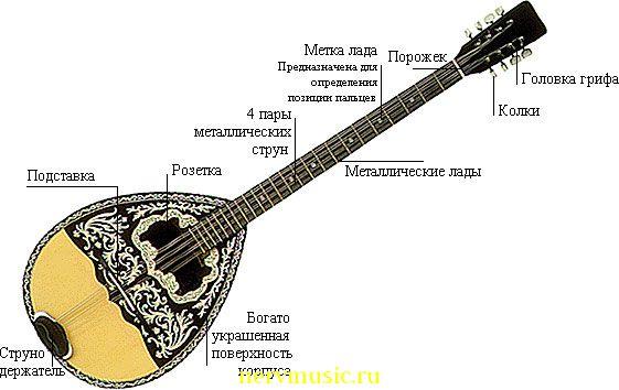 Бузука | Музыкальная энциклопедия от А до Я | Музыкальные инструменты