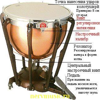 Литавры | Музыкальная энциклопедия от А до Я | Музыкальные инструменты