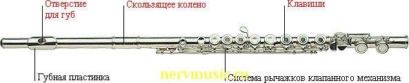Флейта | Музыкальная энциклопедия от А до Я | Музыкальные инструменты