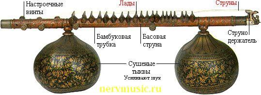Вина | Музыкальная энциклопедия от А до Я | Музыкальные инструменты