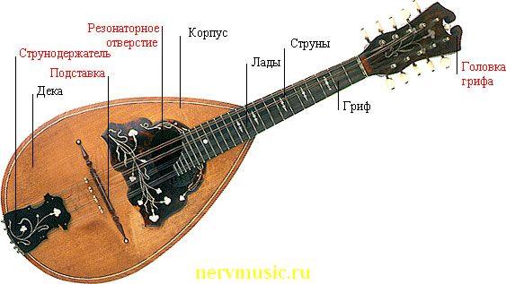 Мандолина | Музыкальная энциклопедия от А до Я | Музыкальные инструменты