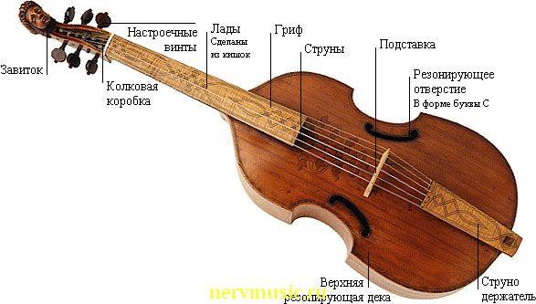 Виола | Музыкальная энциклопедия от А до Я | Музыкальные инструменты