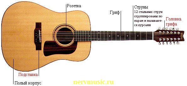 12-струнная гитара | Музыкальная энциклопедия от А до Я | Музыкальные инструменты
