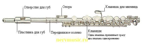 Пикколо | Музыкальная энциклопедия от А до Я | Музыкальные инструменты