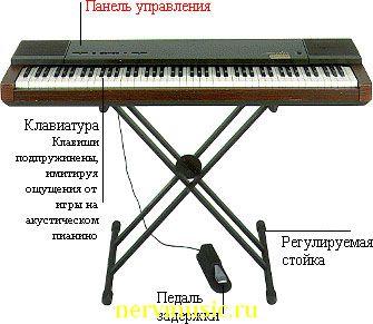 Электрическое пианино | Музыкальная энциклопедия от А до Я | Музыкальные инструменты