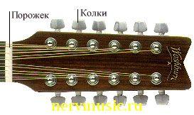 12-струнная гитара   Музыкальная энциклопедия от А до Я   Музыкальные инструменты
