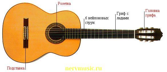 Традиционная гитара | Музыкальная энциклопедия от А до Я | Музыкальные инструменты