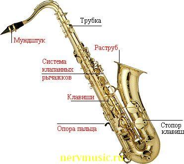 Тенор-саксофон | Музыкальная энциклопедия от А до Я | Музыкальные инструменты