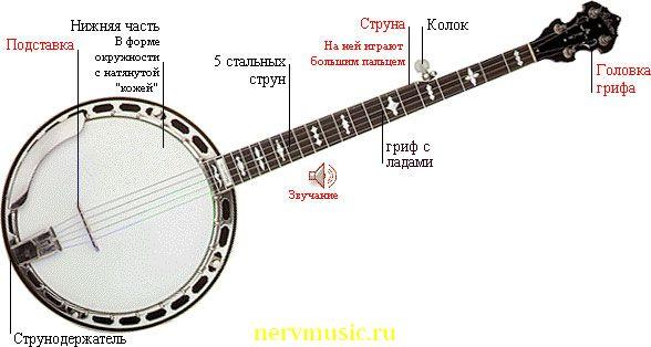 Банджо | Музыкальная энциклопедия от А до Я | Музыкальные инструменты