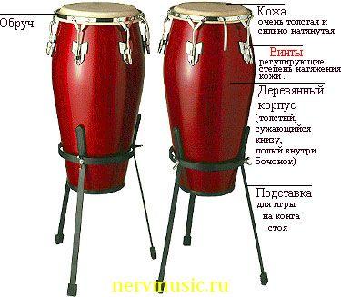Конги | Музыкальная энциклопедия от А до Я | Музыкальные инструменты